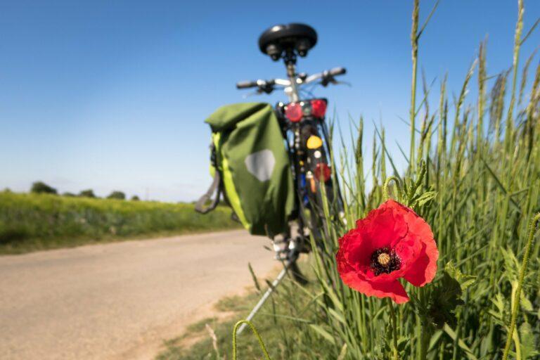 Fahrrad Mohnblume_Bild von Thomas B. auf Pixabay