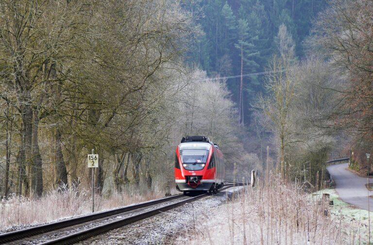 Bahn auf Schienen in winterlicher Waldlandschaft